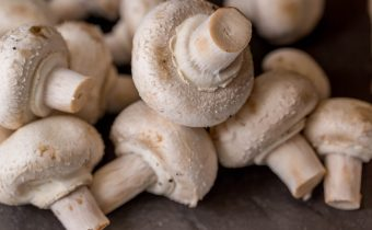 Can mushrooms stimulate healthy ageing?