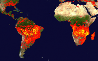 A tale of two wildfires: the Amazon Rainforest and the Congo Basin